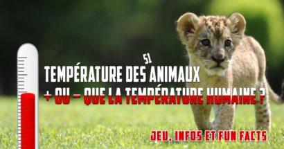 Température des animaux : + ou - que la température humaine ?